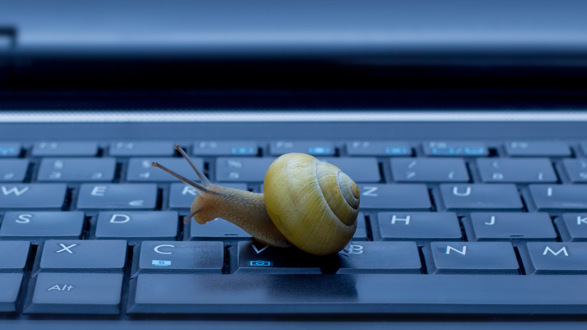 "ACTIONS YOU COULD TAKE TO HELP YOUR ""SNAIL"" EMPLOYEE"